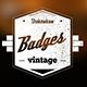 Vintage Badges Pack - VideoHive Item for Sale