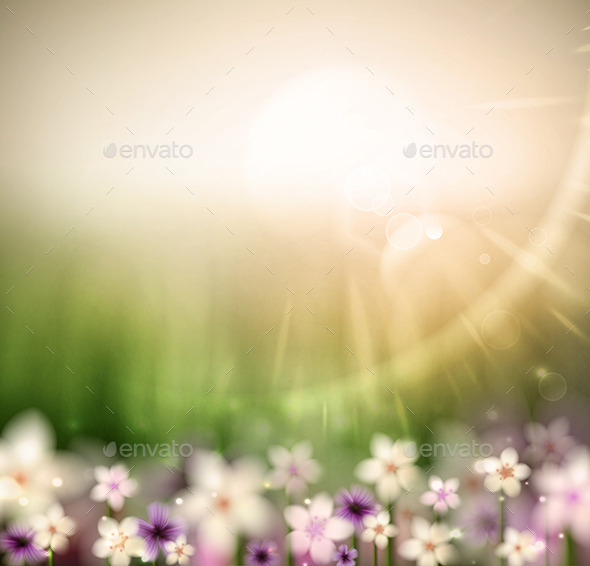 Abstract Natural Background - Flowers & Plants Nature