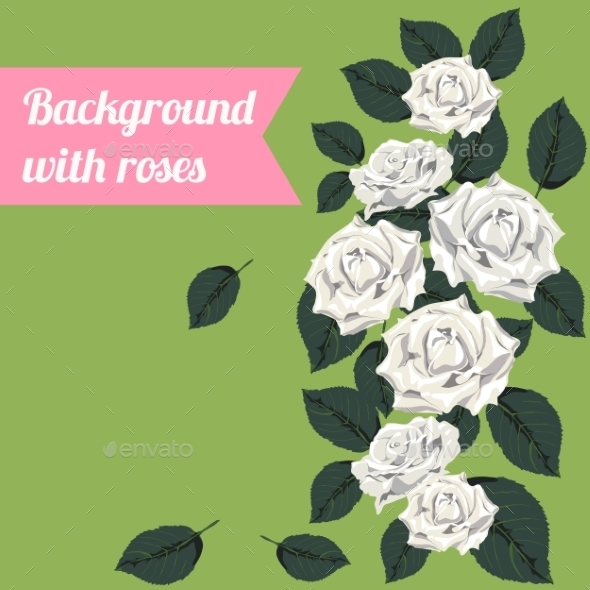 Background with White Roses - Backgrounds Decorative