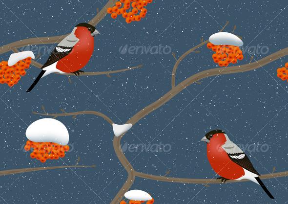 Birds in winter - Seasons Nature