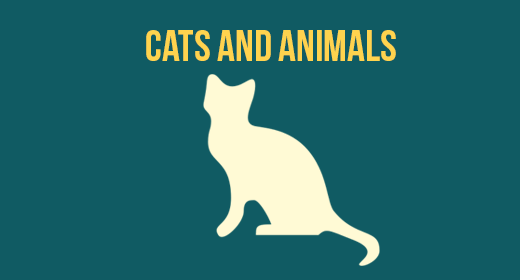 Cats and Animals