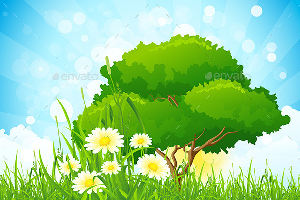 Green Grass with Tree - Landscapes Nature