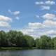 Sunny Pond Time Lapse - VideoHive Item for Sale