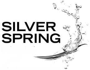 091015 logo silverspring