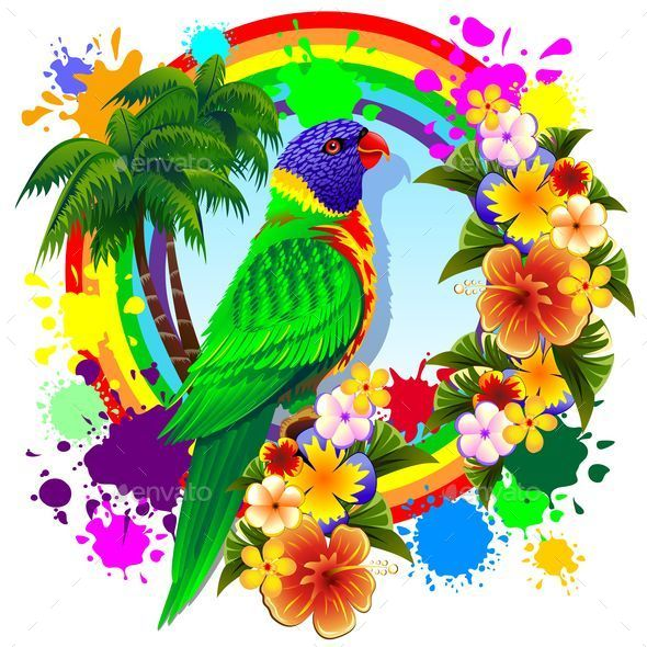 Rainbow Lorikeet Parrot - Animals Characters