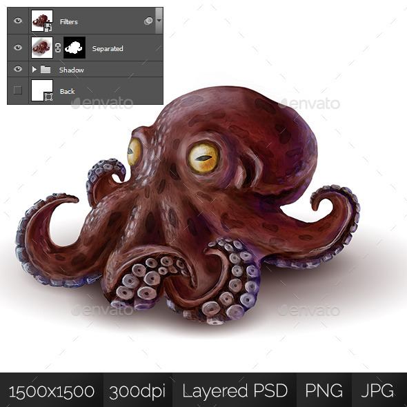 Octopus - Nature Backgrounds