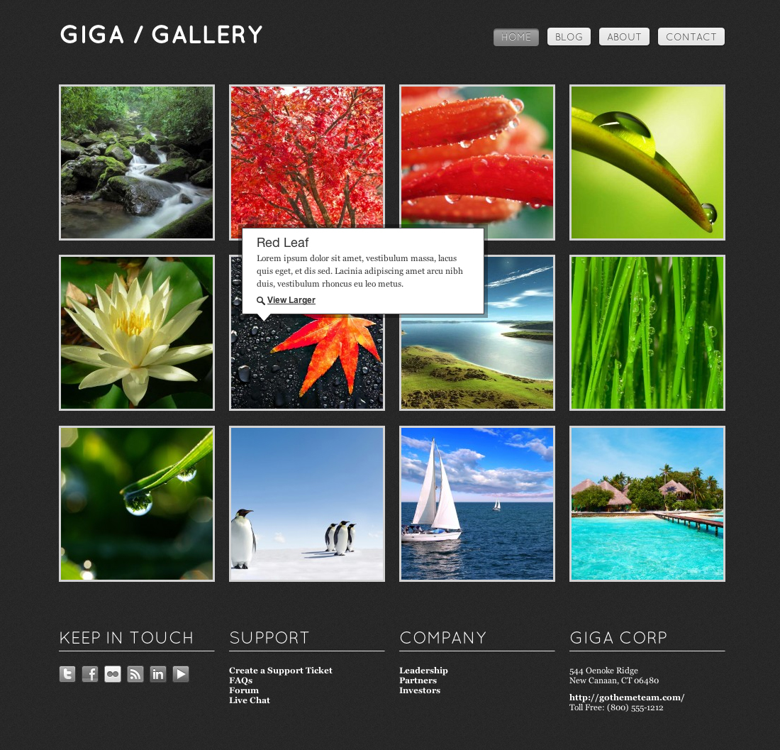 Giga Gallery HTML Template by goThemeTeam | ThemeForest