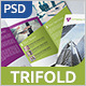 Business Tri-fold Brochure - v008 - GraphicRiver Item for Sale