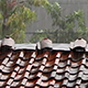 Heavy Rain on the Roof 4 - VideoHive Item for Sale