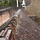 Heavy Rain on the Roof 6 - VideoHive Item for Sale