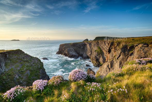 Cornwall Coastline - Stock Photo - Images