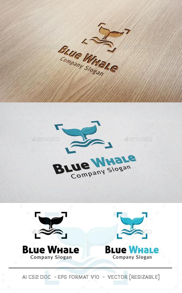 Blue Whale V2 Logo - Animals Logo Templates