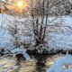 Winter - VideoHive Item for Sale