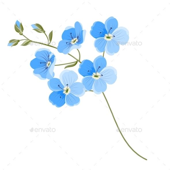 Linen Flower - Flowers & Plants Nature