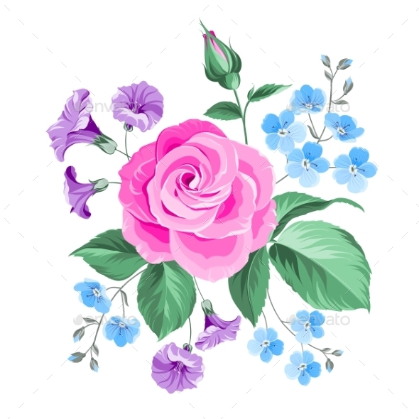 Hand Drawn Rose. - Flowers & Plants Nature
