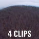 Aerial Scary Woods Pack (4 Clips) - VideoHive Item for Sale