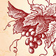 Wine Grapes Vintage Style Illustration - GraphicRiver Item for Sale