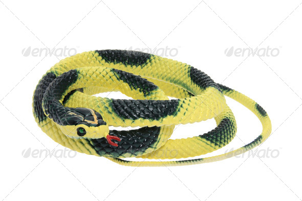 Rubber Snake - Stock Photo - Images