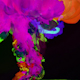 Liquids Mixing In Slow Motion 7 - VideoHive Item for Sale