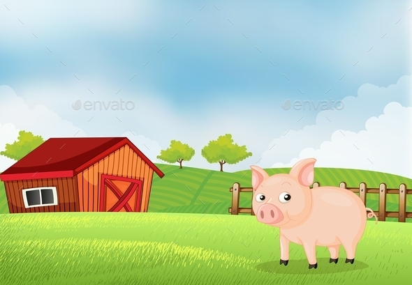 Pig on the Farm with a Barn - Animals Characters
