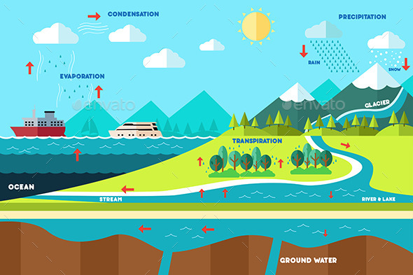 Water Cycle Illustration - Nature Conceptual