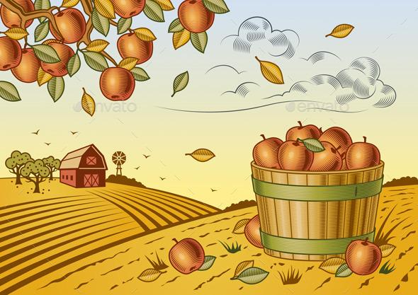 Apple Harvest Landscape - Landscapes Nature
