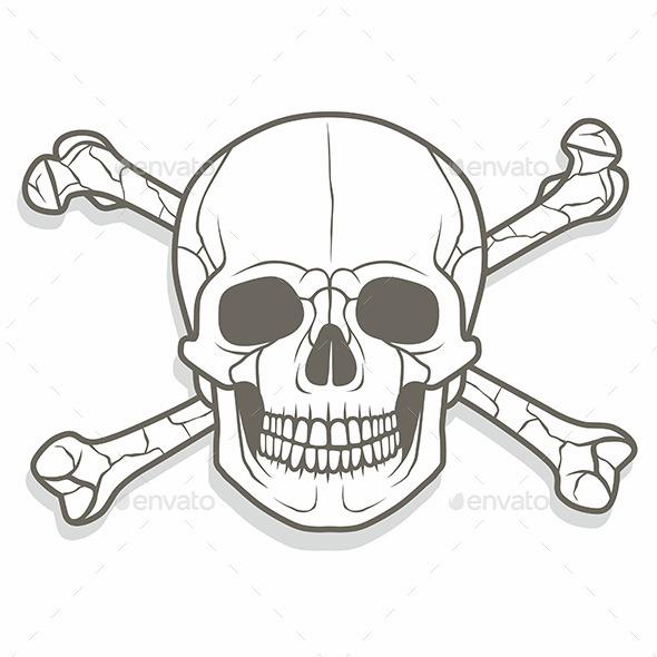Skull and Bones - Vectors