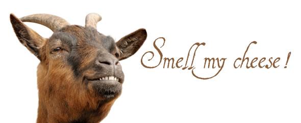 Smellmycheese