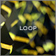 Crystallize Loop 5 - VideoHive Item for Sale
