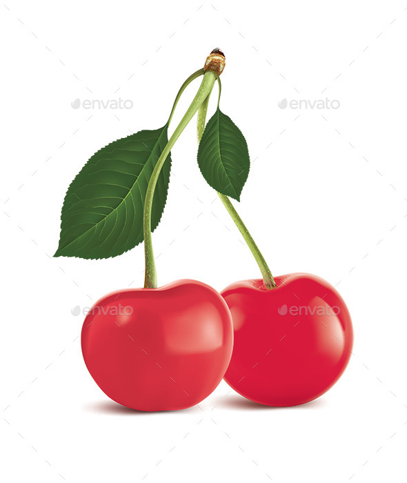 Cherry with Green Leaf - Food Objects
