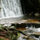 Creek in the Mountains - VideoHive Item for Sale