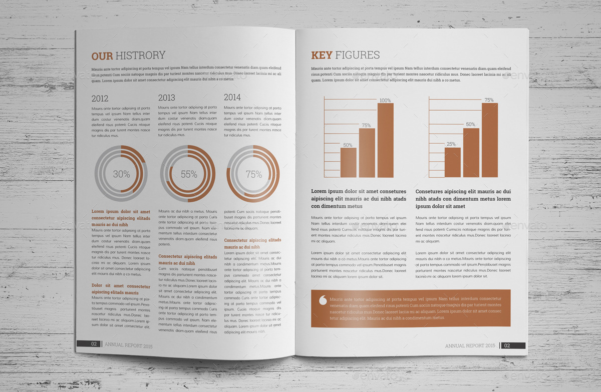 Annual report brochure indesign template v2 by janysultana for Brochure templates envato