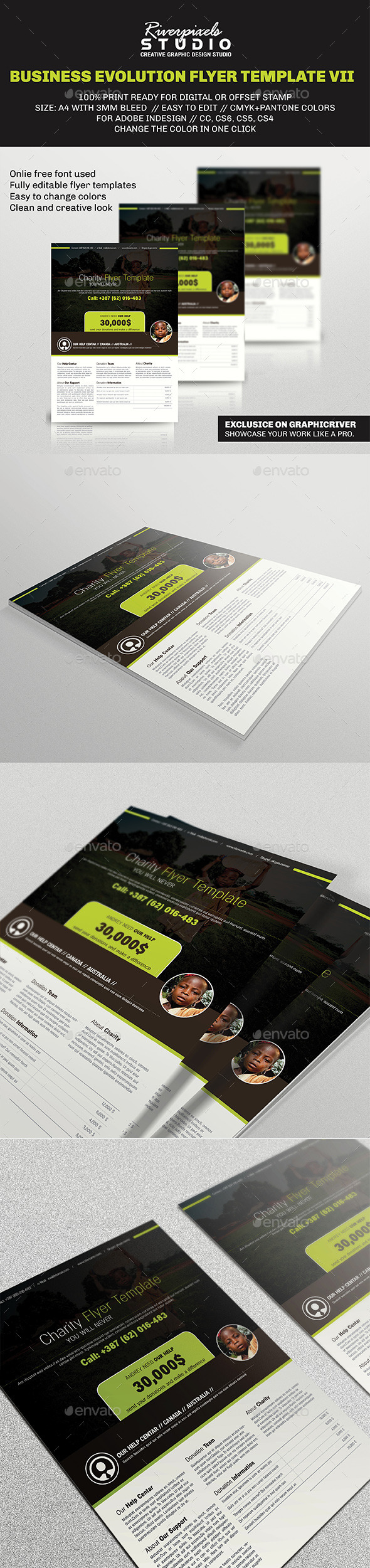 Business Evolution Flyer Template VII - Corporate Flyers