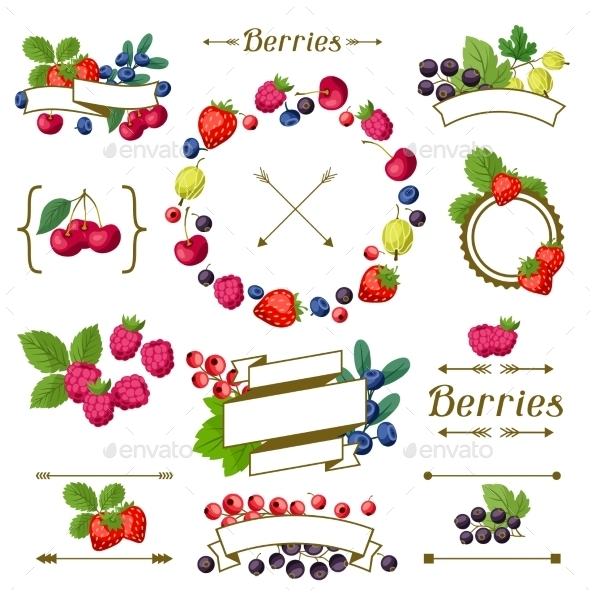 Berry Frames and Labels - Nature Conceptual