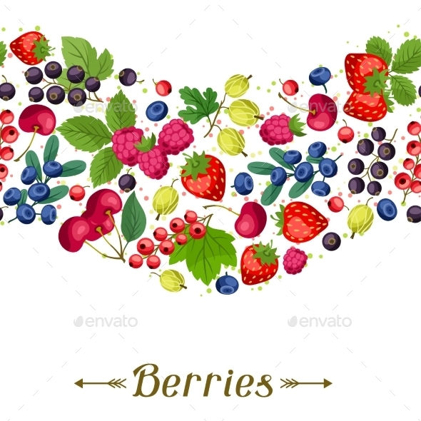 Berries - Nature Conceptual