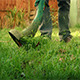 Using A Strimmer In The Garden - VideoHive Item for Sale