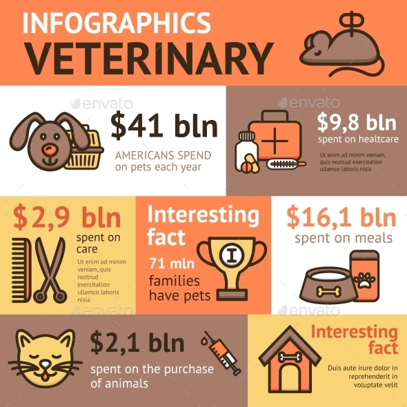 Veterinary Infographic Set - Animals Characters