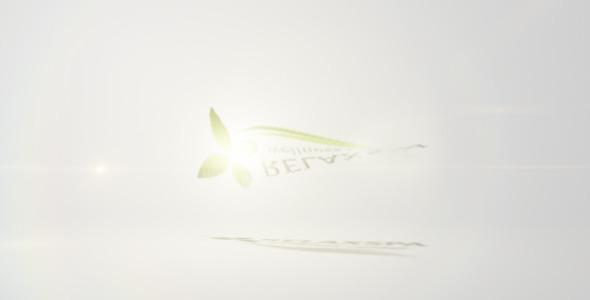 Clean Flip Logo 2