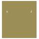 Tree Logo - GraphicRiver Item for Sale