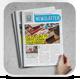 Business Newslatter - GraphicRiver Item for Sale