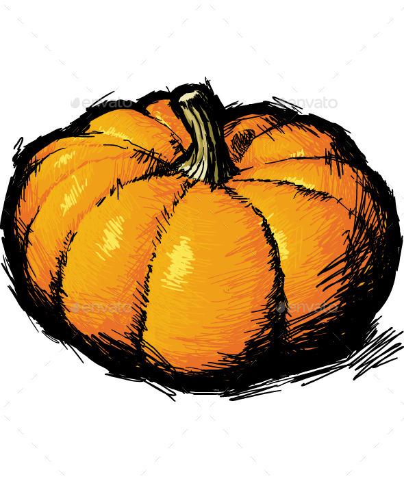 Ripe Pumpkin - Organic Objects Objects
