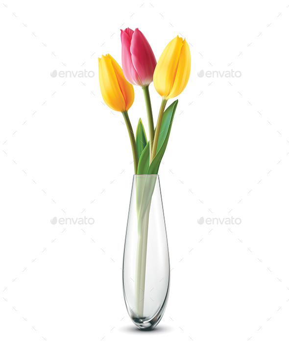 Bouquet of Tulips - Flowers & Plants Nature