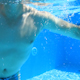 Underwater Swimming 9 - VideoHive Item for Sale