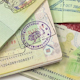 International Passports With Visas 2 - VideoHive Item for Sale