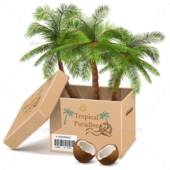 Vector Palm Tree in Box - Travel Conceptual