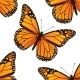 Butterfly Pattern - GraphicRiver Item for Sale