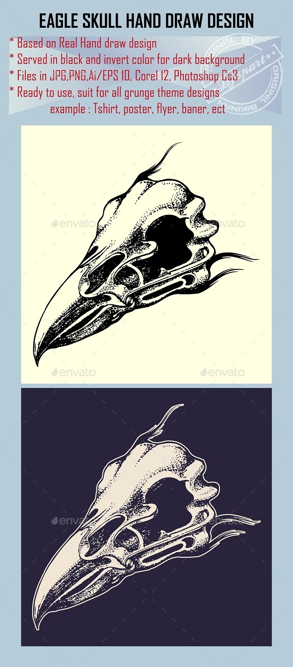 Eagle Skull Hand draw Design Element - Animals Characters
