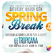 Spring Break or Beach Party Flyer + FB Cover - GraphicRiver Item for Sale