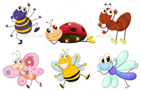 Different Bugs and Insects - Animals Characters