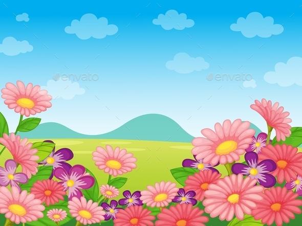 Nature Scene - Landscapes Nature